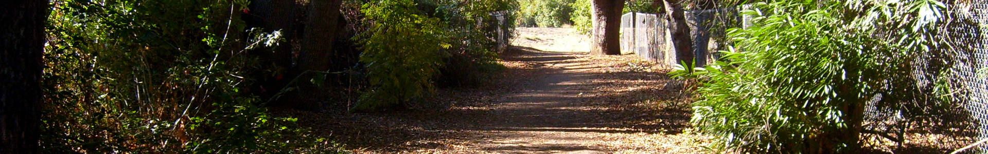 trail-pic-001